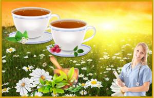 chai zdorove